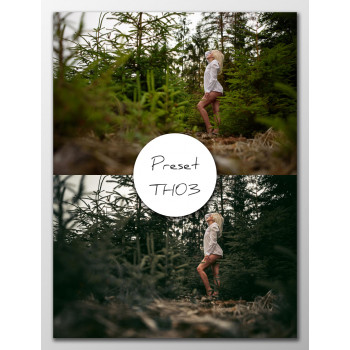 Preset Lightroom TH03